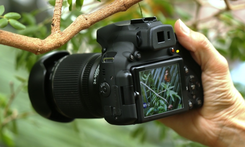 Fujifilm Finepix Hs50 Exr Review Taking On Simplicity At The