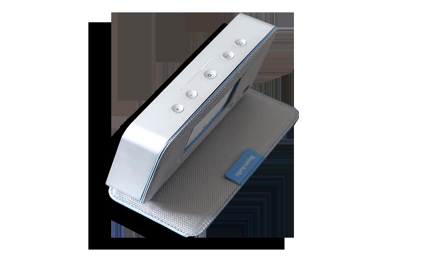 Bayan Audio Soundbook Switches
