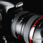 Canon 24-105 Featured